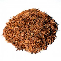 Catuaba (écorce)